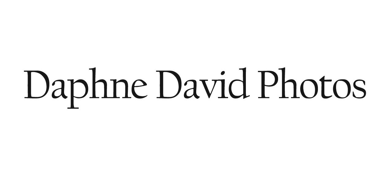 Daphnedavidphotos